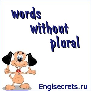words without plural