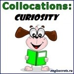 collocations-CURIOSITY
