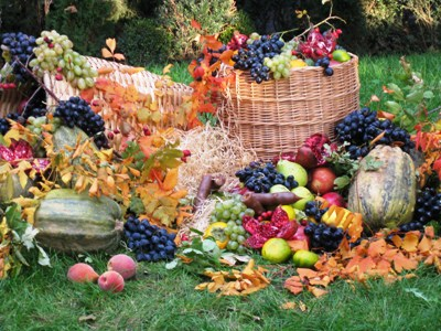 Autumn - harvest season