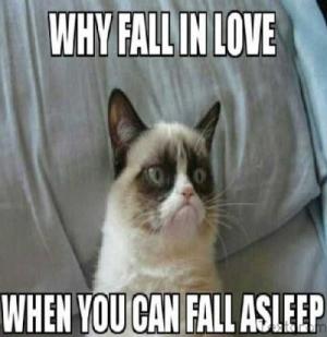 fall-cat