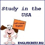 study-in-the-USA