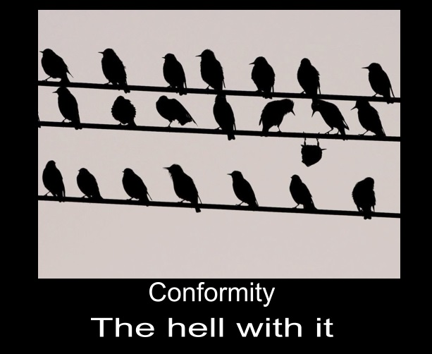 conformity-the_hell_with_it