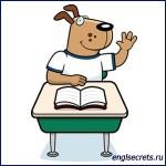 school-dog