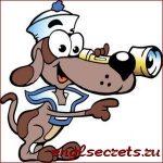 sailor-dog1