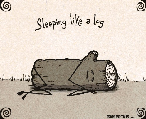 sleeping-like-a-log