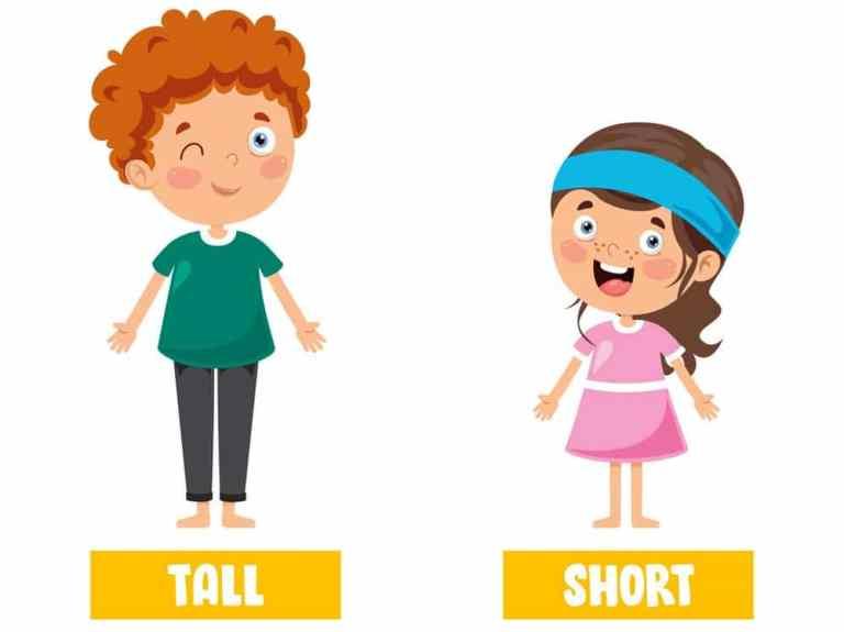 Разница между словами tall и high
