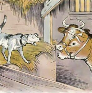 Кошачьи и собачьи идиомы